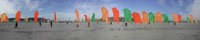 Playa Flags 11""